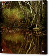 Weeping Branch Acrylic Print