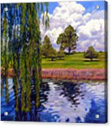 Weeping Willow - Brush Colorado Acrylic Print