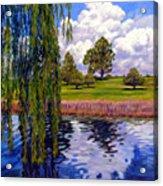Weeping Willow - Brush Colorado Acrylic Print