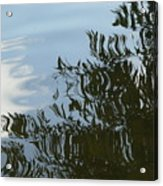Weeping Willow Reflection Acrylic Print
