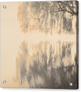 Weeping Willow Woman Acrylic Print