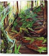 Welcome Paths Acrylic Print
