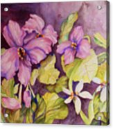 Welcome Spring Violets Acrylic Print