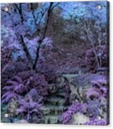 Welcome To My Dreamscape Acrylic Print