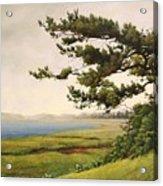 Wellfleet Saltmarsh Acrylic Print