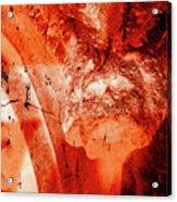 Wells Cathedral Gargoyles Color Negative B Acrylic Print