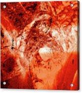 Wells Cathedral Gargoyles Color Negative H Acrylic Print