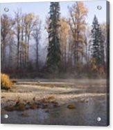 Wenatchee River, Fall 2015 Acrylic Print