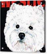 West Highland White Terrier Westie Urban Pop Acrylic Print