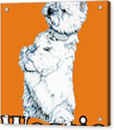 West Highland White Terrier Westie Urban Pop Orange Acrylic Print