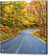 West Virginia Curves - In A Yellow Wood - Paint Acrylic Print