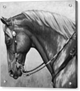 Western Horse Black And White Acrylic Print by Crista Forest