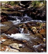 Rocks And Water In Autumn Acrylic Print