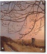 Wet Spring Soft Sunset  Acrylic Print