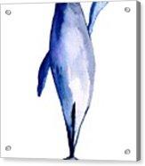 Whale 1 Acrylic Print