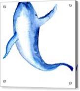 Whale 3 Acrylic Print