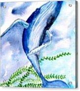 Whale 6 Acrylic Print
