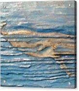 Whale Acrylic Print by Doris Lindsey
