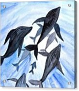 Whale Family On Sun Ray Acrylic Print