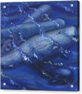 Whales Under The Surface-is That Moby Dick On The Bottom Acrylic Print by Tanna Lee M Wells