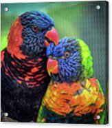 What Are Friends For? Acrylic Print