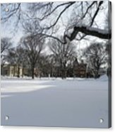 What I Love About Winter Acrylic Print