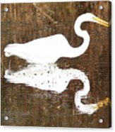 What The Egret Caught Acrylic Print