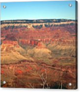 Whata View Acrylic Print