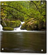 Whatcom Creek Gorge Acrylic Print