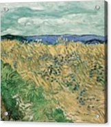 Wheat Field With Cornflowers At Wheat Fields Van Gogh Series, By Vincent Van Gogh Acrylic Print
