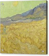 Wheat Field With Reaper At Wheat Fields Van Gogh Series, By Vincent Van Gogh Acrylic Print