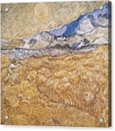 Wheat Field With Reaper Harvest In Provence Acrylic Print