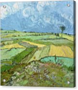 Wheat Fields After The Rain, The Plain Of Auvers Acrylic Print