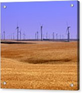 Wheat Fields And Wind Turbines Acrylic Print