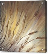 Wheat In The Wind Acrylic Print