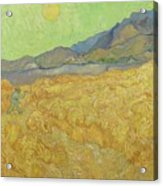 Wheatfield With A Reaper Saint-remy-de-provence, September 1889 Vincent Van Gogh 1853 - 1890 Acrylic Print