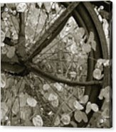 Wheel Of Fortune Acrylic Print