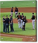 When No One Can Decide What To Call A High Fly Ball Acrylic Print