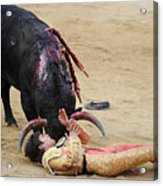 When The Bull Gores The Matador Vii Acrylic Print