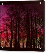 When The Deep Purple Falls Acrylic Print