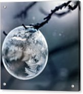 When The World Freezes Acrylic Print