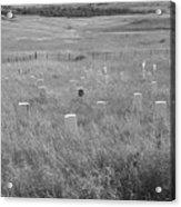 Where Custer Fell, Little Big Horn Acrylic Print