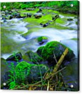 Where The Golden Waters Flow Acrylic Print