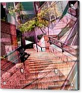 Which Way Up Acrylic Print