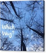 Which Way? Acrylic Print
