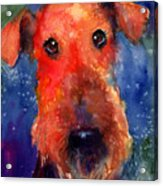 Whimsical Airedale Dog Painting Acrylic Print by Svetlana Novikova