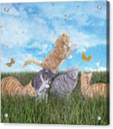 Whimsical Cats Acrylic Print