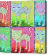 Whimsical Colorful Tabby Cat Pop Art Acrylic Print