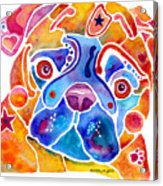 Whimsical Pug Dog Acrylic Print by Jo Lynch