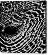 Whirlpool Abstract - Bw Acrylic Print